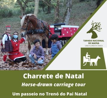 TAPADA NACIONAL DE MAFRA CHARRETE DE NATAL*